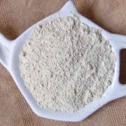 Astragalus Powder