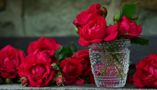 The Blooming Benefits of Rose
