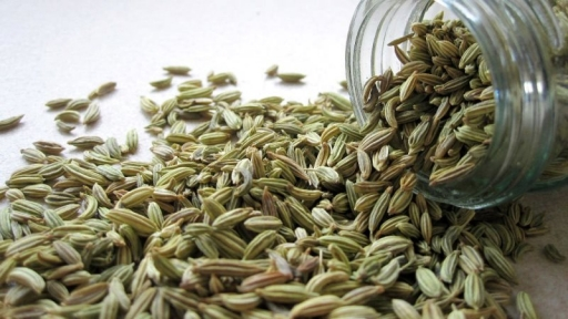 Fennel for Fast Digestive Relief