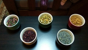 Herbs for Skincare and Healing