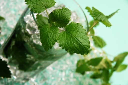 Powerful Points of Peppermint